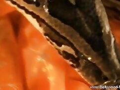 জাপানি ভাবি চুদাচুদি ভিডিও