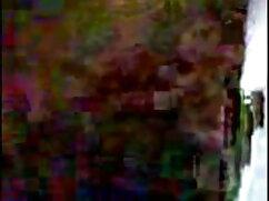 মাই এর, চুদাচুদি সরাসরি দেখাও ছোট মাই, অঙ্গবিন্যাস