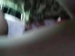 ছোট, কালো চুদা চুদি বিডিও নিম্নস্থান বোন